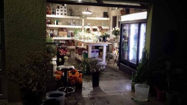 Blossom Alliance Flower shop