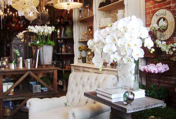 Empty Vase Flower Shop