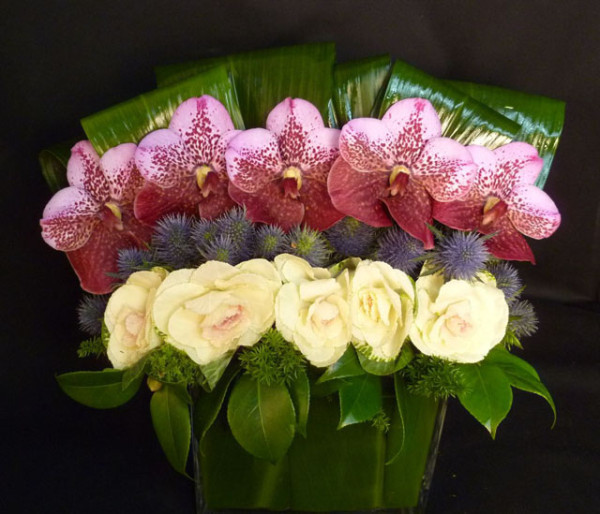 The Arrangement NYC, Contemporary design of ornamental kale and Vanda Orchids