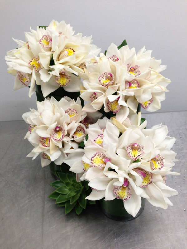 The Arrangement NYC, White Cymbidium Orchid flower arrangement