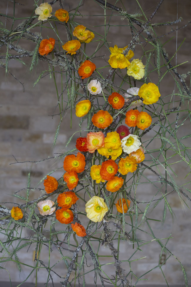 Florabundance Design Days & Chapel Designers Conference - Poppy Installation