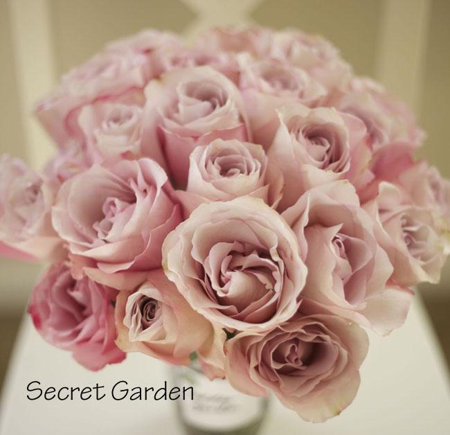 Florabundance, A pale lavender rose
