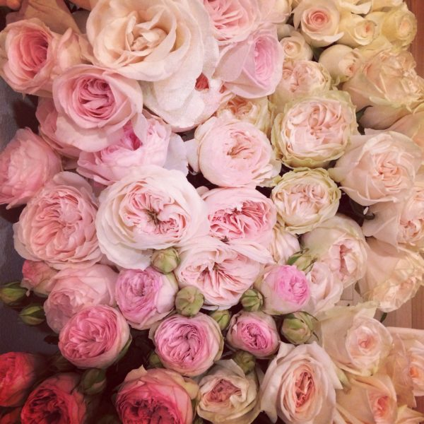 Florabundance Pink Roses