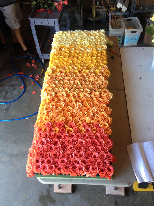 Events In Bloom - Creating a Flower Wall