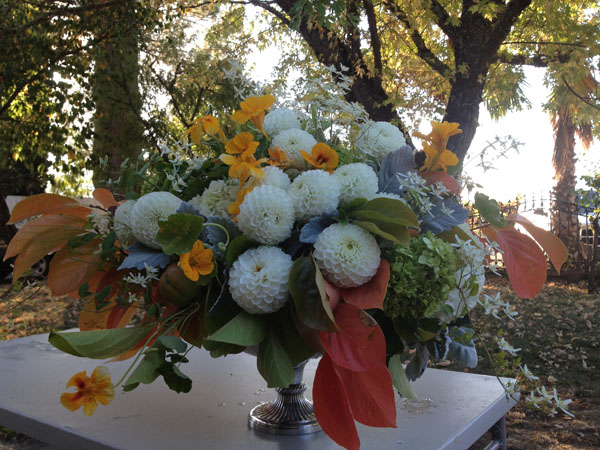 Bella Fiori - Fall floral centerpiece with white dahlias, nasturtiums, persimmon foliage