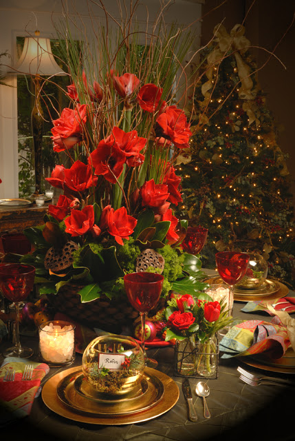 Robin Wood Flowers - Traditional Christmas Flowers