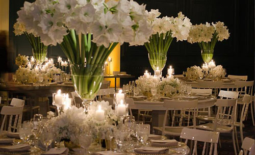 Stemz in Toronto, White Amaryllis Wedding Centerpieces