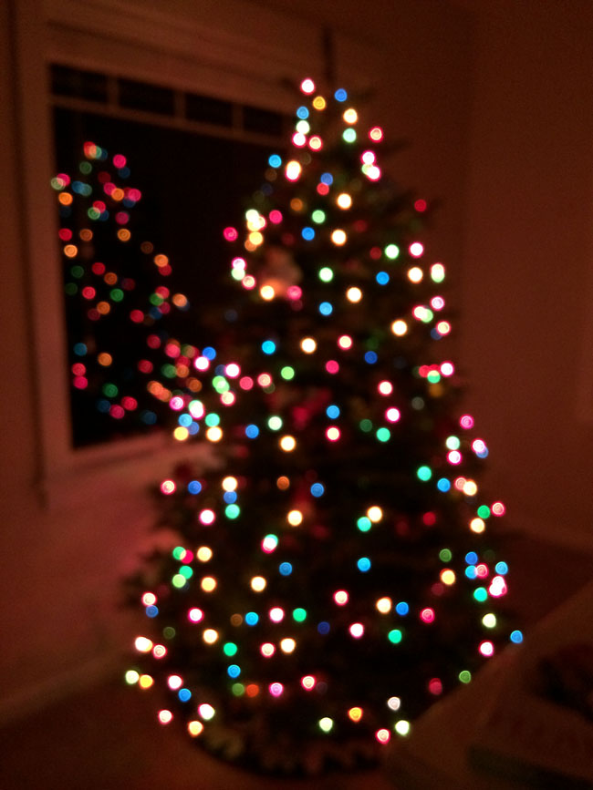 12/25 - Merry Christmas! We loved our Christmas tree twinkling in the front window! December was a very busy month!