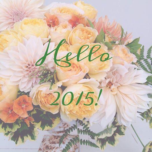 hello 2015