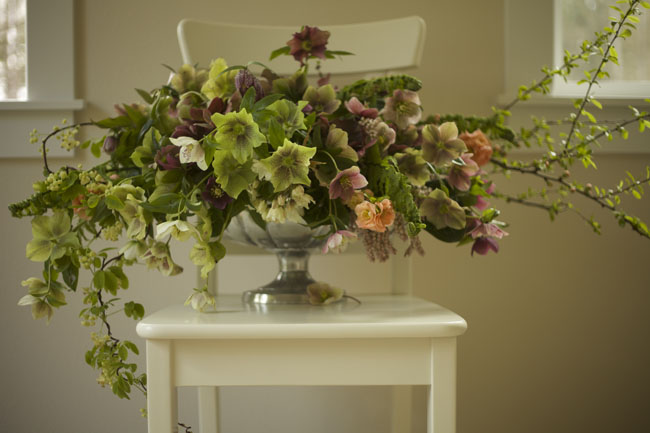 Bella Fiori - Hellebore flower arrangement