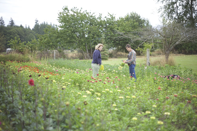 Everyday flower farm in Stanwood