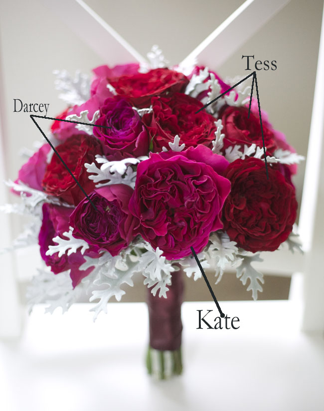David Austin Garden Roses: Tess, Darcey and Kate