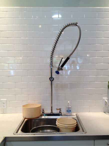 Fiori's Floral Sink