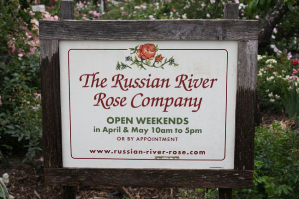 Russian River Rose Company