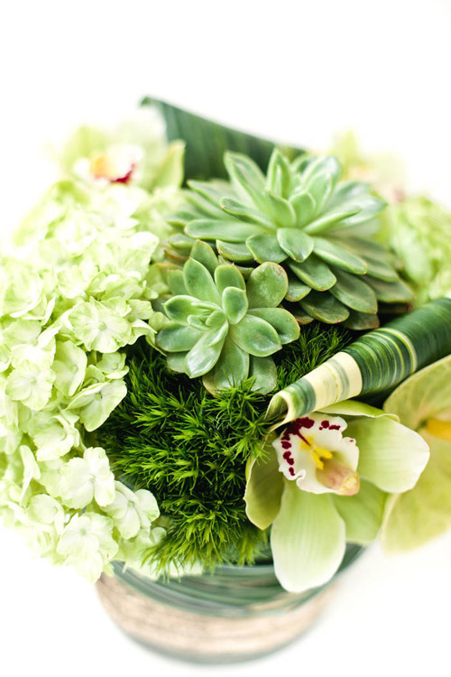natural-green-flowers-218-3-700