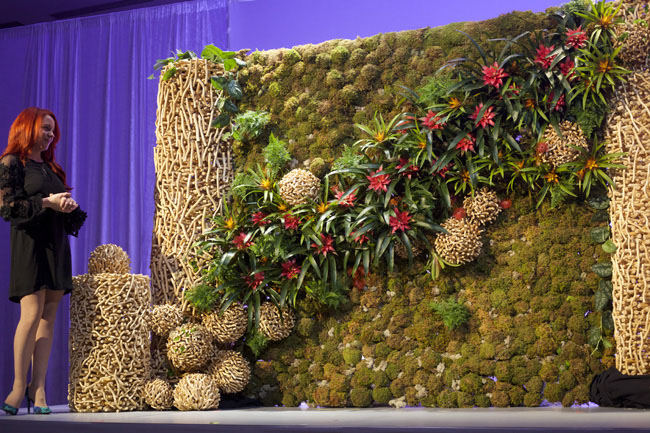 AIFD Symposium Denver 2015 -  Wall of plants designed by Jenny Thomasson AIFD