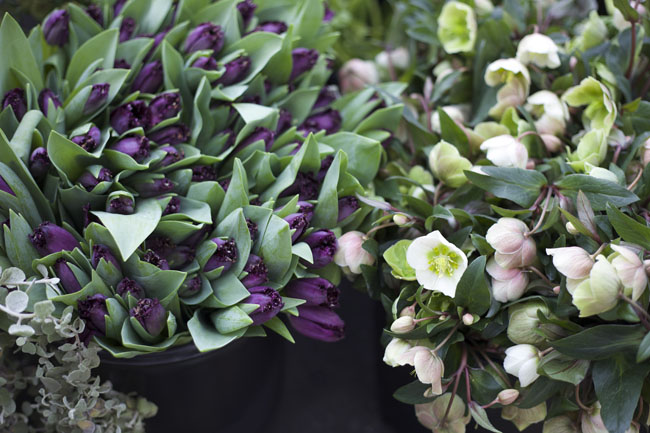 Florabundance Design Days 2016 -  purple tulips and white hellebores