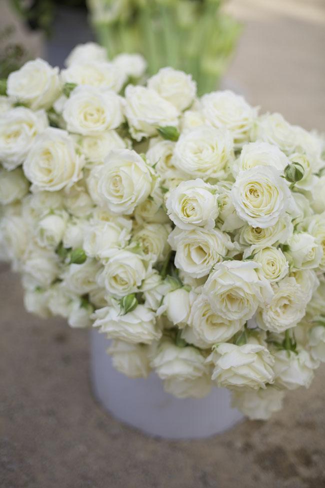 Florabundance Design Days 2016 - White spray rose