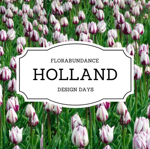 Florabundance Holland Design Days