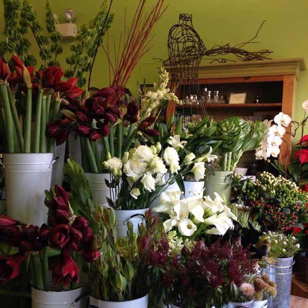FlowersFlowers illinois
