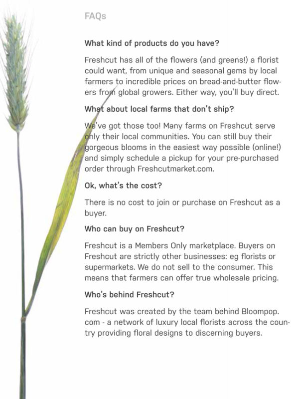 Freshcut (www.freshcutmarket.com), an online marketplace for farmer-to-florist flower sales