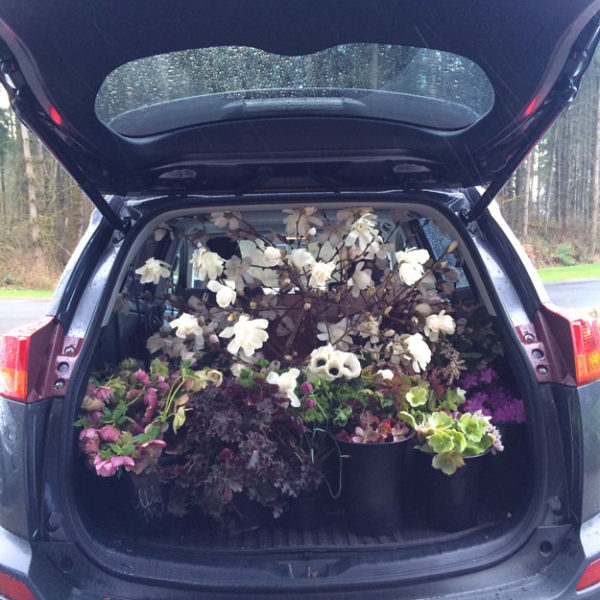 Bella Fiori - Car loaded with flower buckets