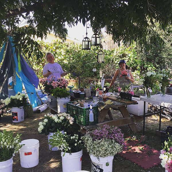 Passion Flowers Design, Santa Barbara, California