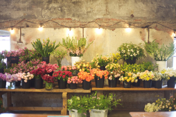 The beautiful spread of flowers at Seattle Wholesale Growers Market for the workshop with Ariella Chezar