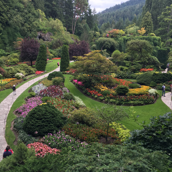 Butchart Gardens is absolutely breathtaking.