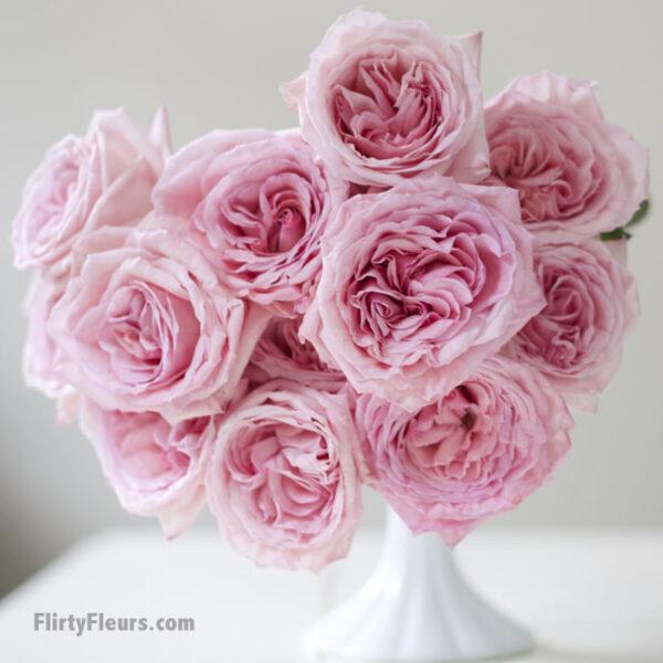 Flirty Fleurs Pink Garden Roses Study with Alexandra Farms -  Pink O'hara garden rose