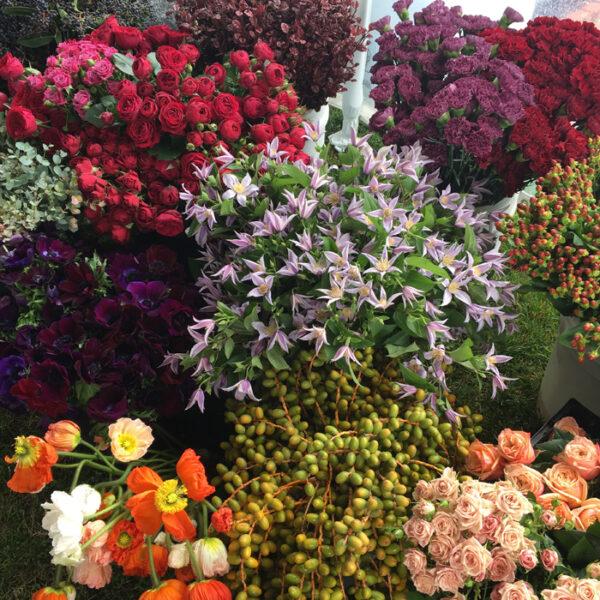 Flirty Fleurs - Florabundance Design Days 2017