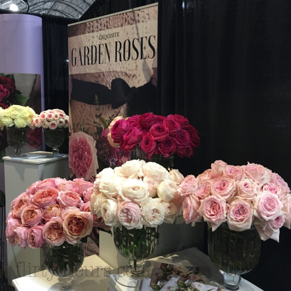 Garden Roses Direct booth at World Floral Show in Las Vegas