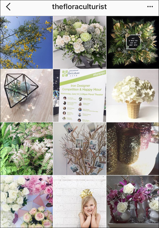 Stacey Carlton AIFD, The Flora Culturist - AIFD Designers to Follow on Social Media