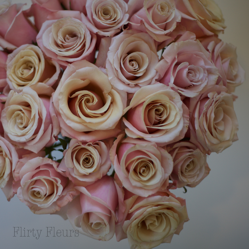 Flirty Fleurs Pink Rose Study with Roses from Amato Wholesale - Day 3 - Mother of Pearl