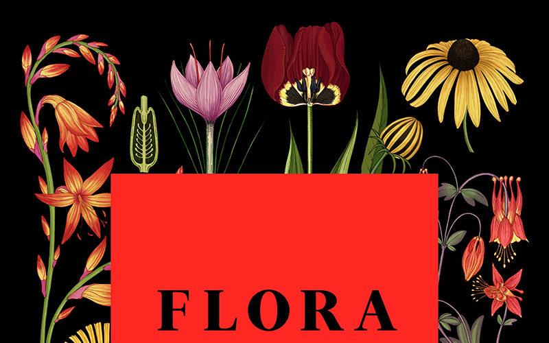 International Flower Festival FLORA| 20 – 29 October in Córdoba, Spain