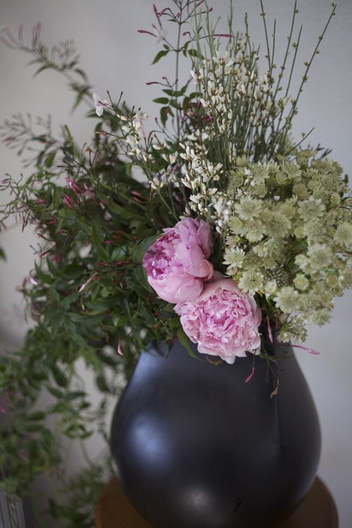 pink peonies, jasmine, astrantia, ginestra