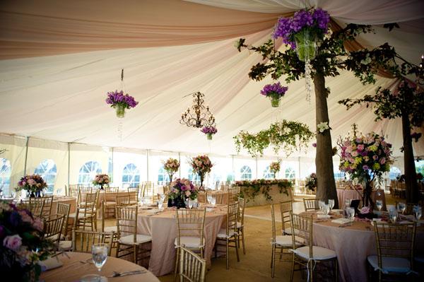 elegant tent settings