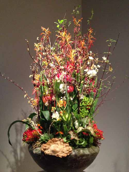 Floral Designer: Twigs and Stems