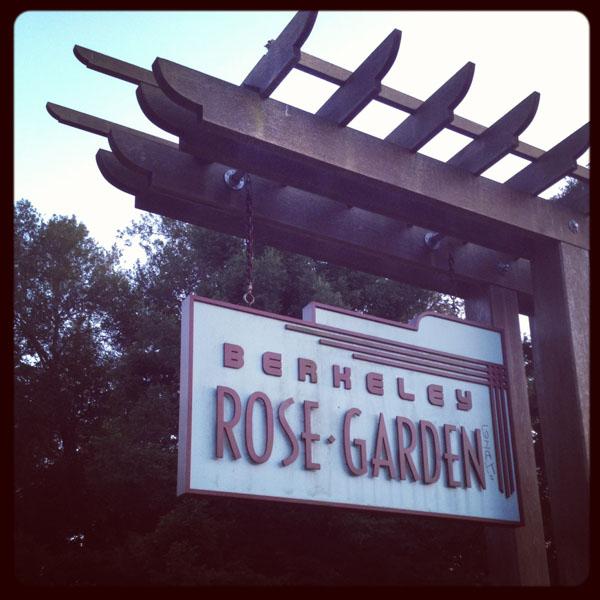 Excellent Flower Adventures :: Berkeley Rose Garden