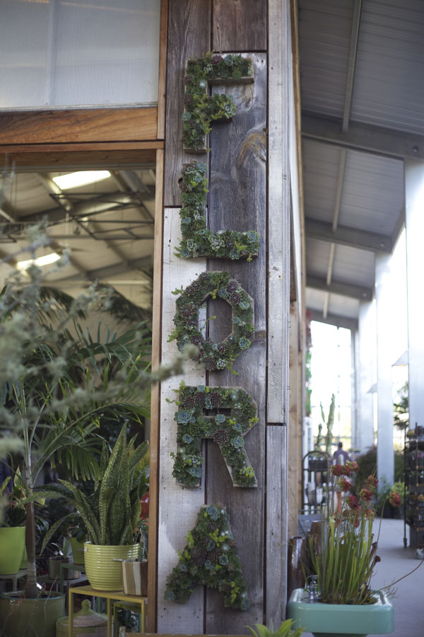 flora sign made out of succulents