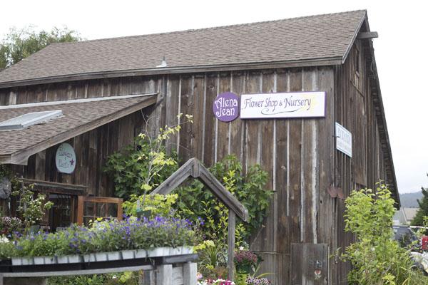 flower shop and nursery