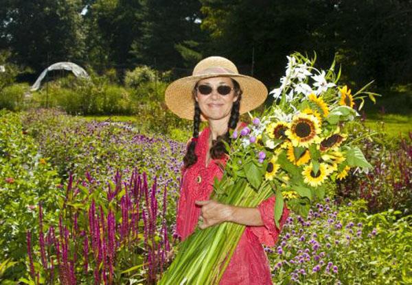 Kate Harvesting Sunflowers