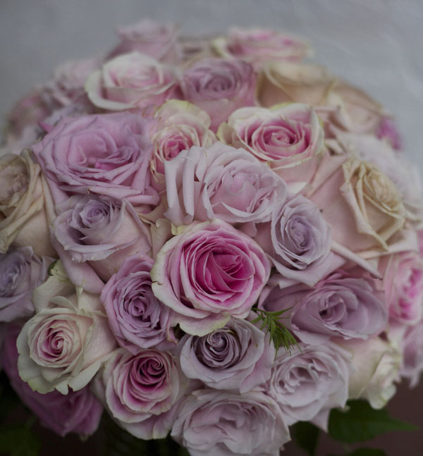 bouquet of blush roses