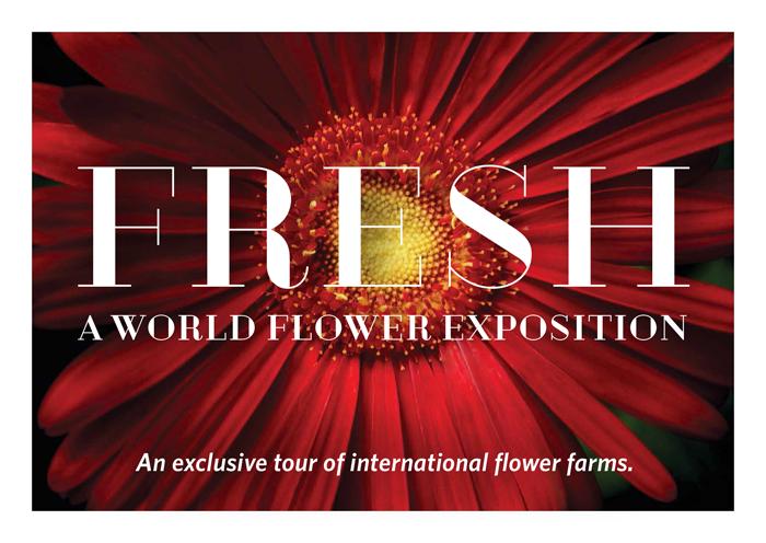 Flower Show Denver August 24