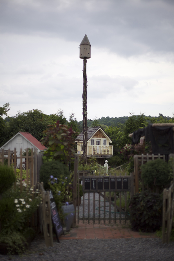 children tree house