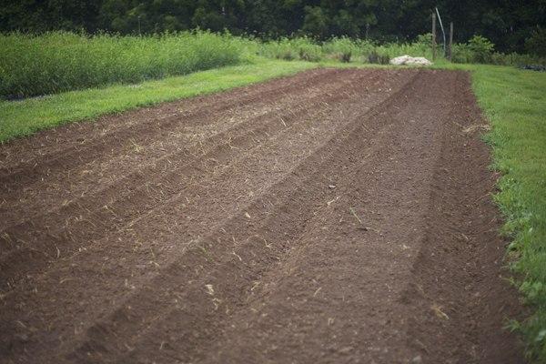 flower farm soil
