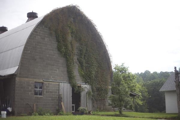 barn on a flower farm