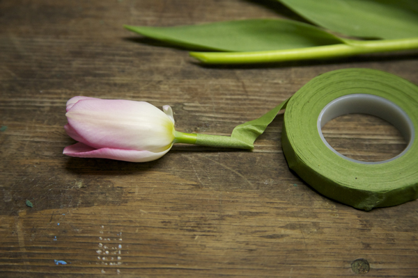 how to wire a tulip