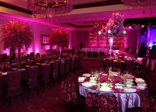 elegant purple reception room
