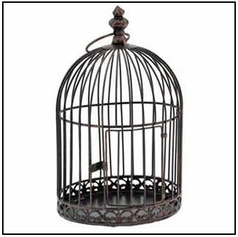 bird cage for floral centerpiece